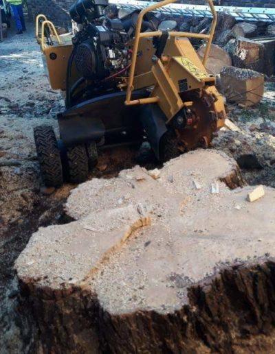 stump chipping sandton