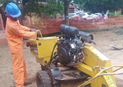 stump griding service sandton
