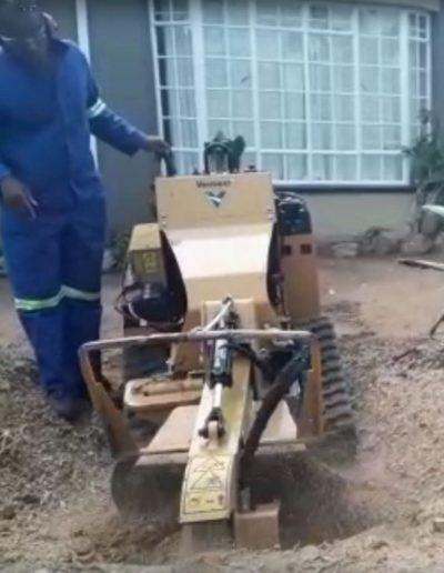 stump removal fourways